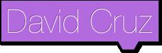 David Cruz | Diseño Desarrollo Programación de Sitios y paginas web economicas.